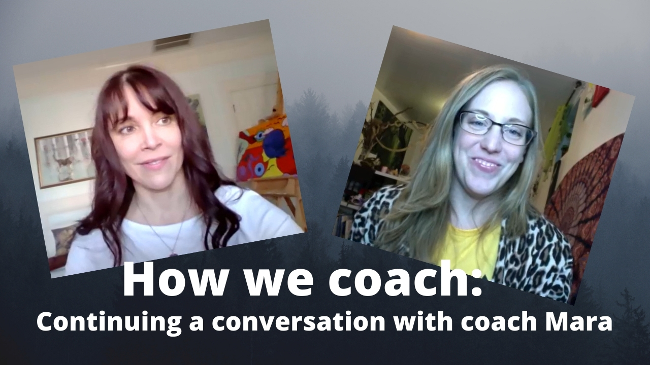 How we work as coaches – conversation 2